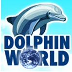 Florida Keys Swimming with Dolphins Tour & Ticket